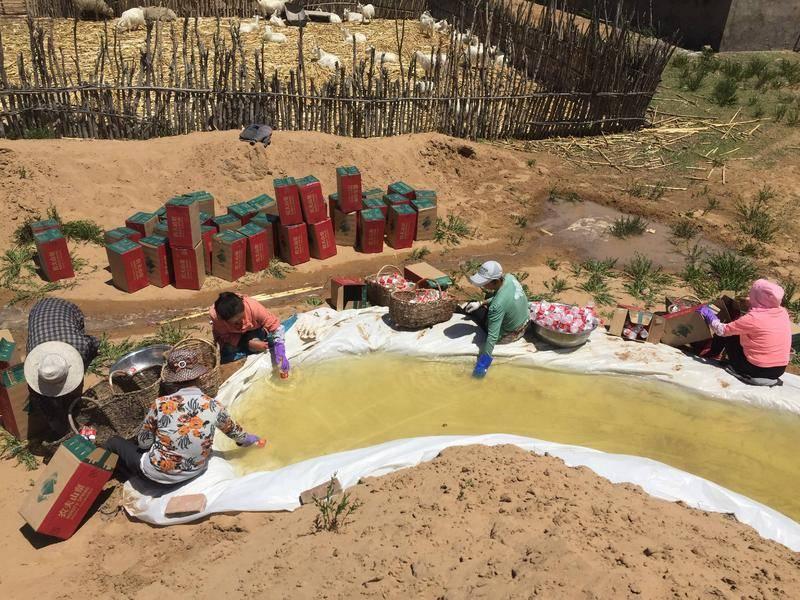 2018年,坚果兄弟发动小壕兔乡村民 罐装当地饮用水用来展览。图片:受访者